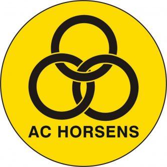 horsens.jpg